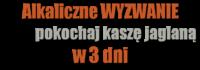 Alkaliczne_wyzwanie_logo